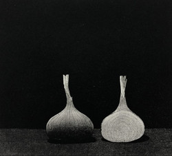 Kaskipuro  Kaksi sipulia
