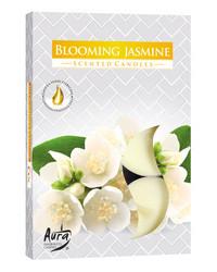 Tuoksutuikku 6 kpl jasmiini
