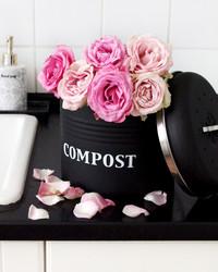 Kompostiastia musta