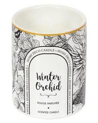 Tuoksukynttilä Winter Orchid