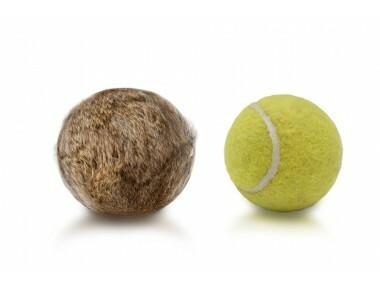 Tennispallo kaninkarvapäällysteellä