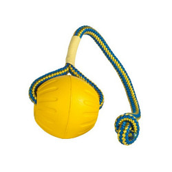 Swing n' Fling DuraFoam Fetch ball L
