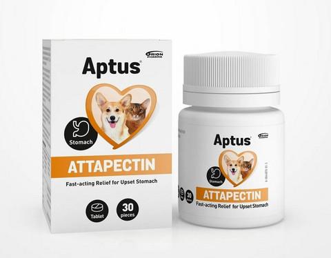 Aptus Attapectin