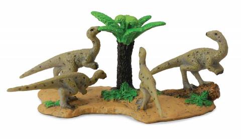 Hypsilophodonit Collecta