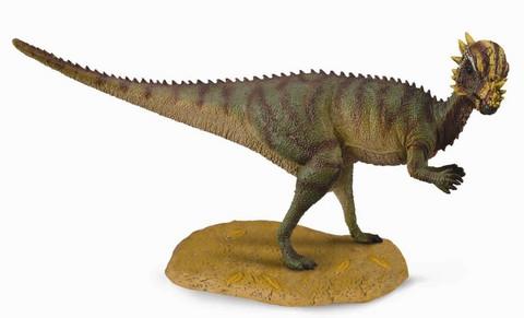 Pachycephalosaurus Collecta