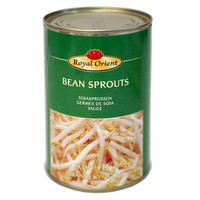 ROYAL ORIENT BEAN SPROUTS 425G