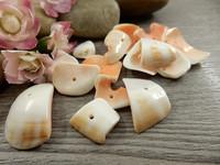 Simpukkahelmiä, 8~25mm, valkoinen/oranssi, 20kpl