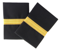 Epaulette, 1-Bar, Gold, pari (1490029)