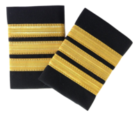 Epaulette, 3-Bar, Gold, pari (1490031)