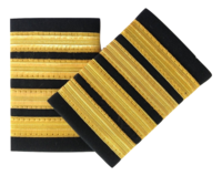 Epaulette, 4-Bar, Gold, pari (1490032)