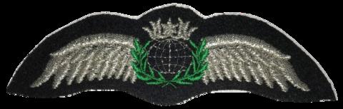 Pilot Wing (neulottava), hopea