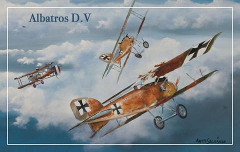 Turvalompakko Albatros D.V