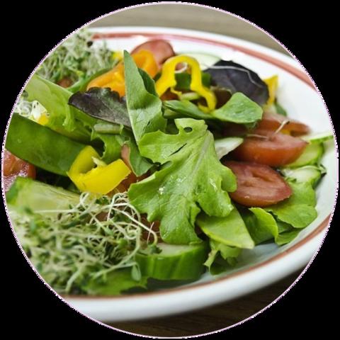 Vegaaniruokavaliota noudattavan vuotuisten 0,95t CO2-päästöjen hyvitys