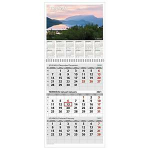 Trio seinäkalenteri 2021 290 x 415mm