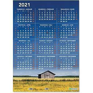 Vuosijuliste taulukkokalenteri 2021 520 x 720 mm