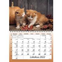 Kisut seinäkalenteri A5 2022