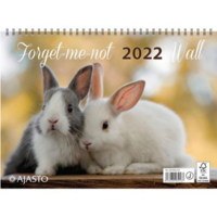 Forget-me-not-wall seinäkalenteri 2022 290 x 420mm