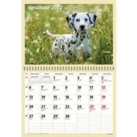 Koirat seinäkalenteri 2022 290 x 420 mm