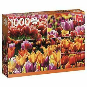 Jumbo Holland Tulips 1000palaa