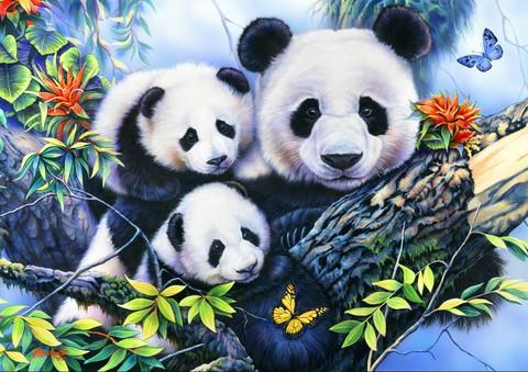 Bluebird Panda Family-palapeli