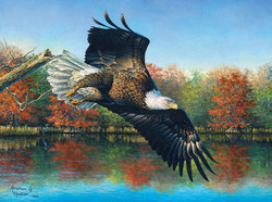 Sunsout Abraham Hunter-Wetlands Eagle-palapeli
