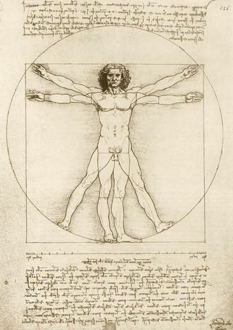 Bluebird Leonardo Da Vinci The Vitruvian Man 1490 palapeli