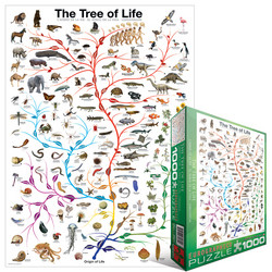 Eurographics Evolution The Tree of Life palapeli
