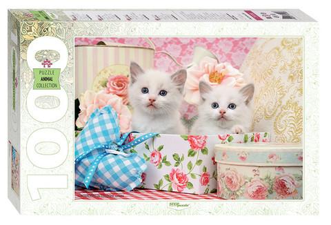 Step Puzzle Kittens palapeli