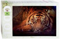 Step Puzzle Siperian Tiikeri palapeli