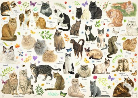 Jumbo Cat Poster palapeli