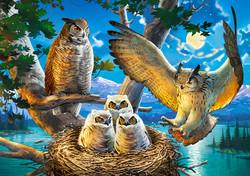 Castorland Owl Family palapeli 500 palaa