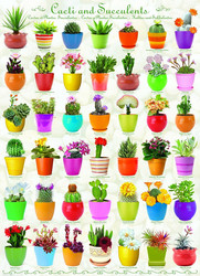 Eurographics Cacti And Succulents palapeli 1000 palaa