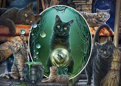 Schmidt Lisa Parker - Magical Cats palapeli 1000 palaa