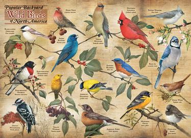 Cobble Hill Popular Backyard Wild Birds palapeli 1000 palaa