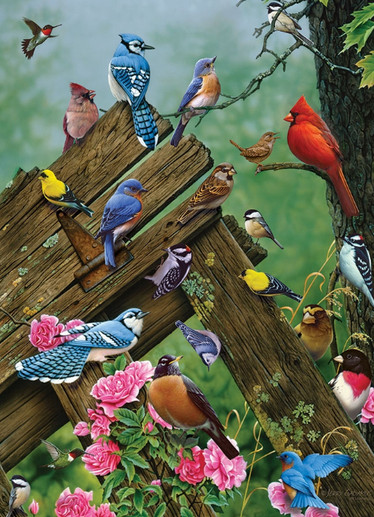 Cobble Hill Birds of the Forest palapeli 1000 palaa