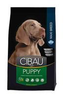Cibau Puppy Maxi Breed suurten rotujen koiranpennuille 12kg