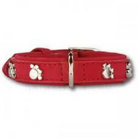 PETTARAZZI  Artleather Silverpaws Red 40cm x 20mm