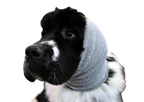 Happy Hoodie- rauhoittava korvatuubi Xlarge harmaa