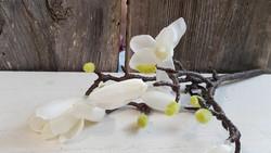 Magnolia branch white