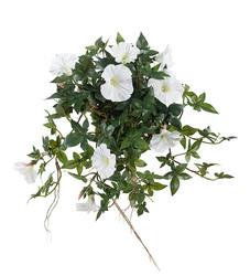 Sikflower white