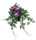 Purple / white hanging flower