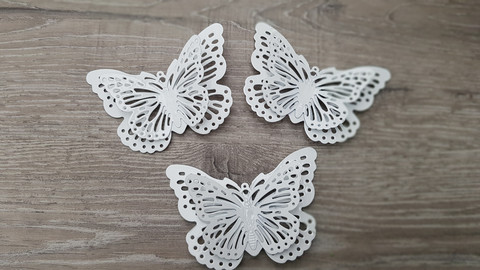 Butterflymagnet