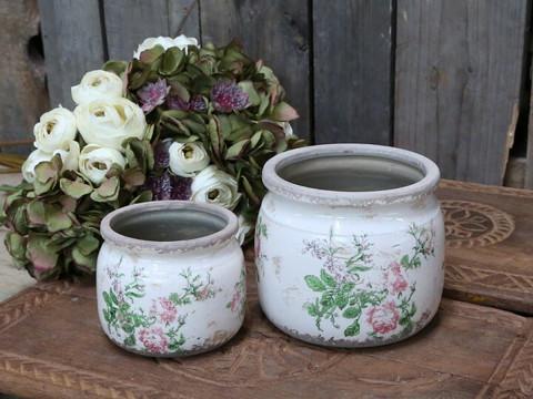 Flowerpot rose
