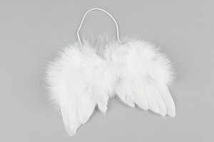 Feather wings hanging