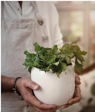 Glazed pot white big