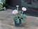 Ranunculus ceramic pot