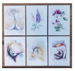 Kuusi erilaista postikorttia