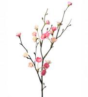 Kukkaoksa 50cm