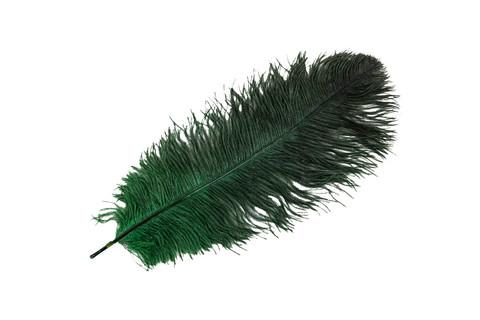 Vihreä strutsin sulka 60cm