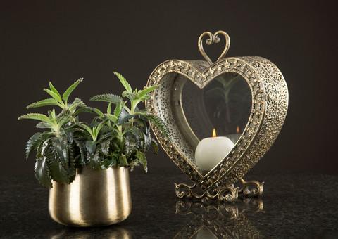 Sydän lyhty antiikkimessinki